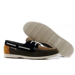 Lacoste Brown Dark Brown